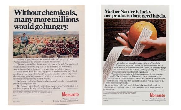book_triptico_Monsanto32.jpg